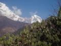 Le Nepal 28