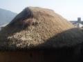 Le Nepal 3